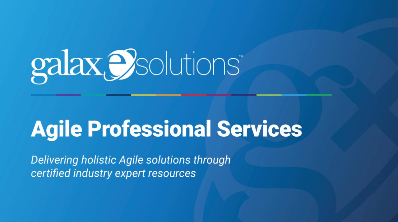 Agile Professional Services