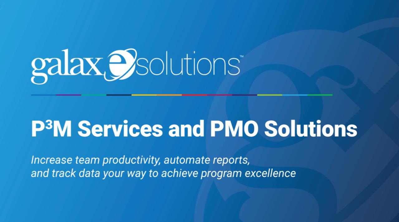 P3M Services